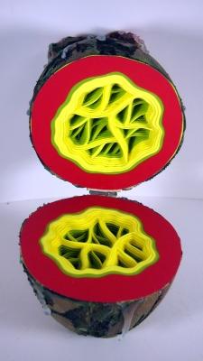 Aliens Egg Interior