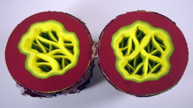 Red Aliens Egg Detail Interior